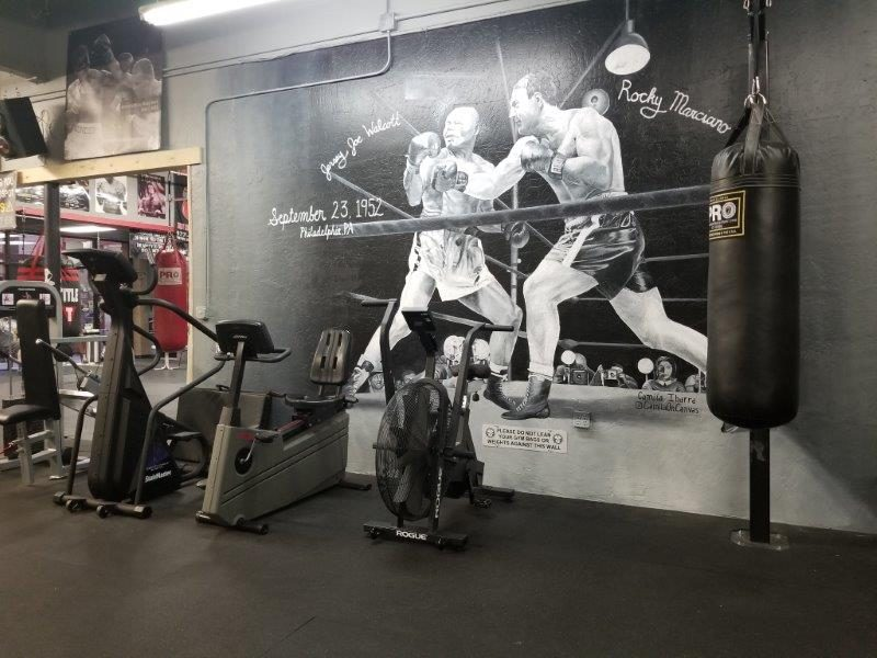 IronGloves Boxing Gym Cardio Equipment