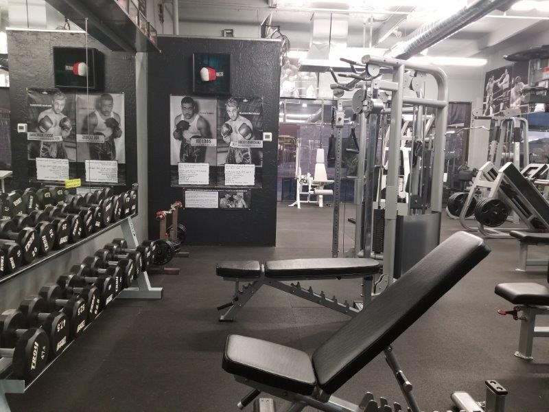 IronGloves Boxing Gym Troy Dumbbells