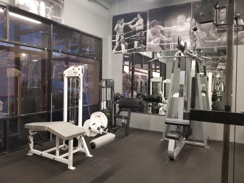 IronGloves Boxing Gym Magnum Curl Machine